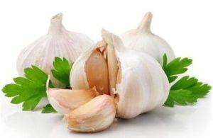 How Long Does Garlic Last?