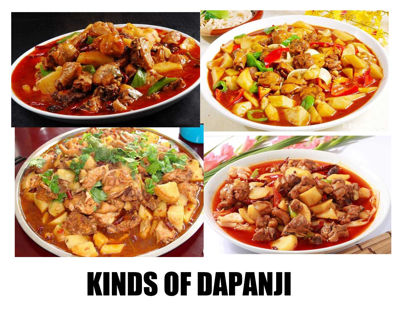kinds of dapanji