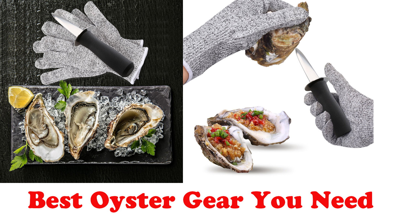 Best Oyster Gear You Need