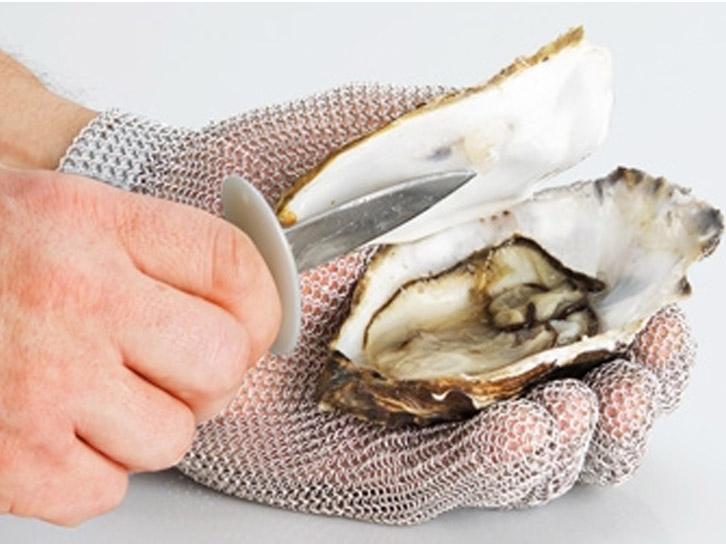 Oyster Gear