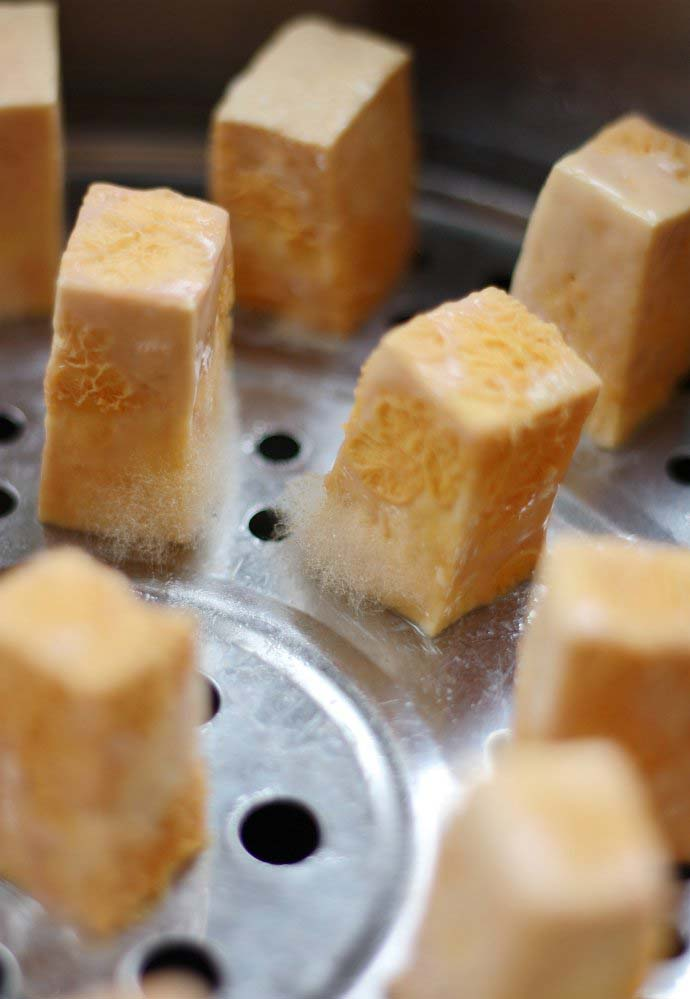 the mold of Fermented Tofu beginning to take hold