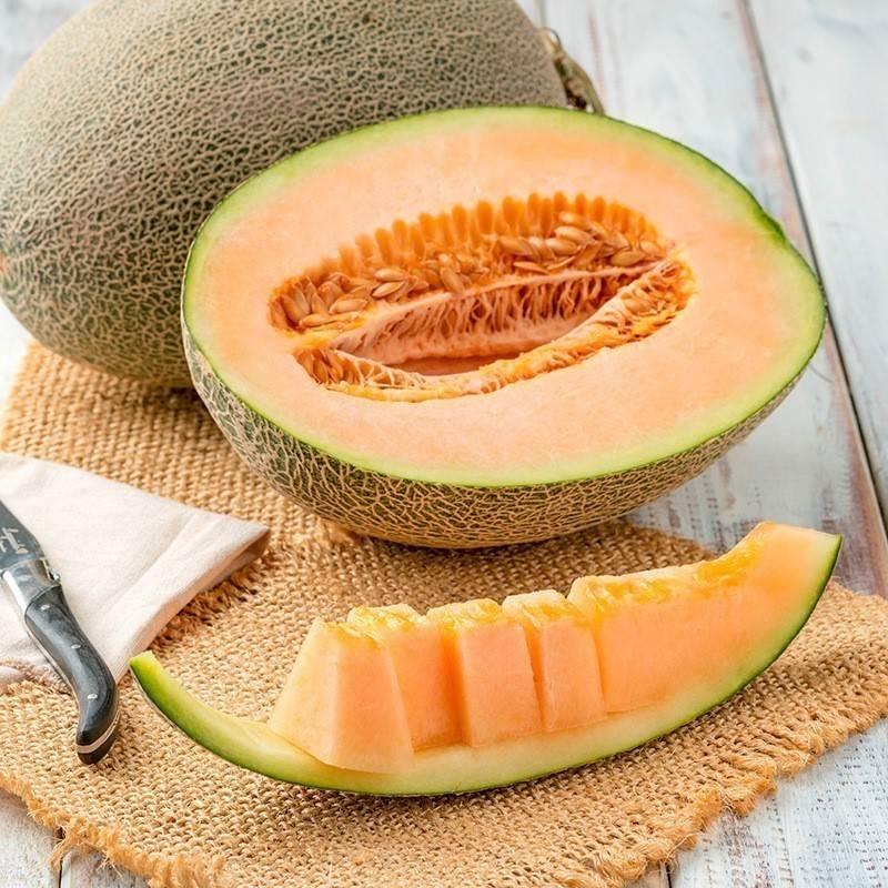 Honeydew fruit