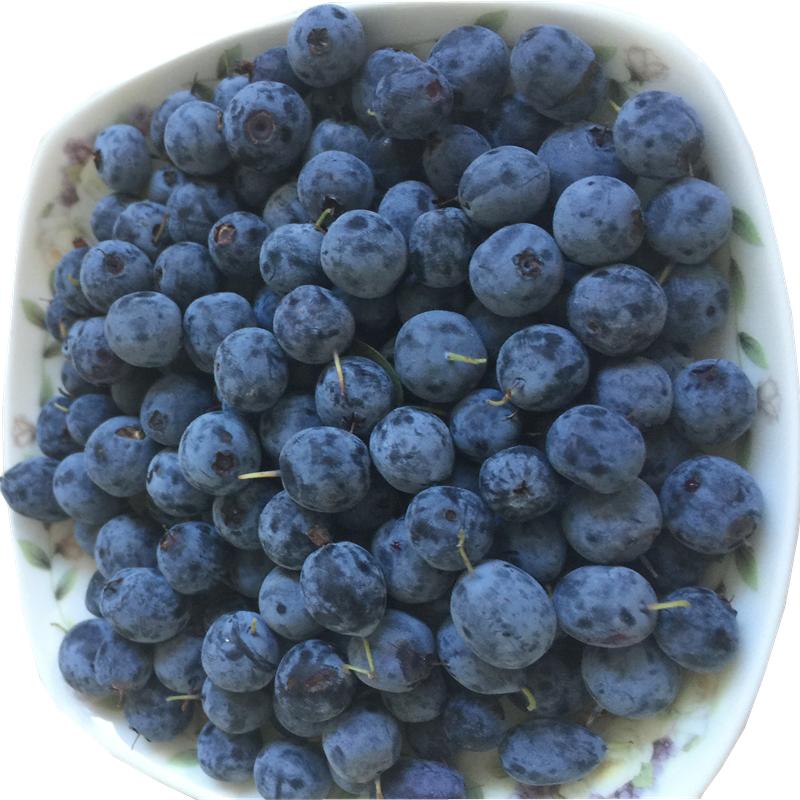 Huckleberry fruits